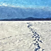 Footprints  in the snow by mirop
