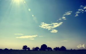 Summer Lens Flare by eyefish