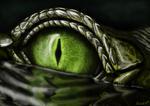 Gavial Eye by MenoaTheWise