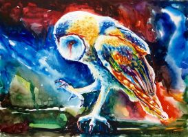 #1 Barn Owl by ArtKosh