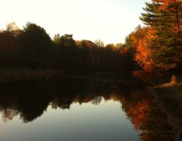 Russet Reflections of Autumn by katieblueeyes