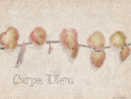 Carpe Diem by Escara40