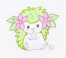 Shaymin doddle by xXRoconzaXx
