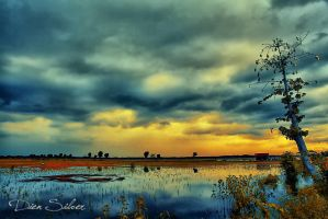 Clouds before the rain fall .. by diensilver