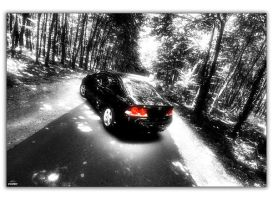 Civic in the forrest_02 by hellpics