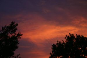 Red Sky by christinee