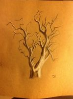 Tree (before leaves) by sunfoot