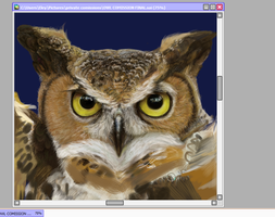 WIP--Owl Commission by FireLioness
