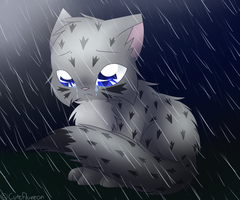 Ashfur in the Rain by FlareAKACuteFlareon