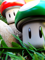Mushrooms in the Wild Kingdom by mrbrownie