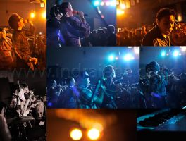 .::Maliq and d'essentials::. by iebe