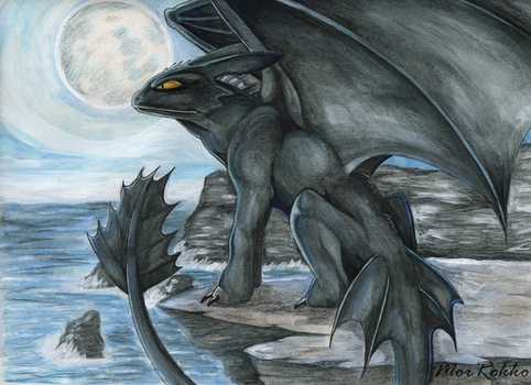 Night Fury by MorRokko