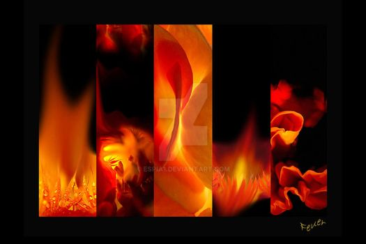 elements: fire by espia1