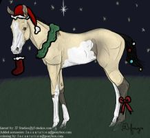 Christmas Foal by snowybell14