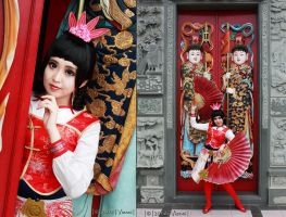 Dynasty Warriors 5 : Da Qiao by pinkyluxun