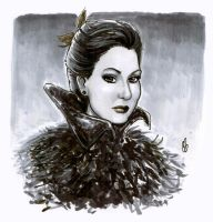 Regina, the Evil Queen by BigChrisGallery