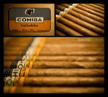 Cohiba III by Dave-D