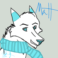 ID for Matt by Phoebepup