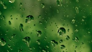 Raindrops by P-Ron