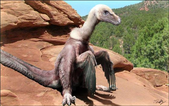 Velociraptor mongoliensis by keesey