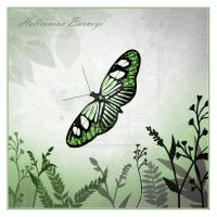Butterfly In Green by Sarahorsomeone
