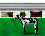 Phantom at 1st Annual HARPG Houston Livestock Show by angry-horse-for-life