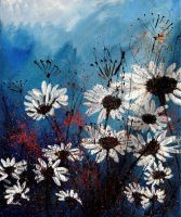 daisies by pledent