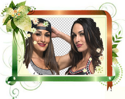 The Bella Twins Reunited by EveryDivaEver