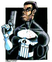 The Punisher by paigey