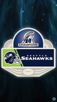 Seahawks NFC Champs by Stealthy4u