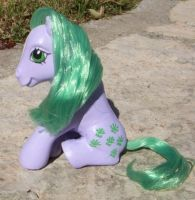 My Little Pony Custom Seashell by colorscapesart