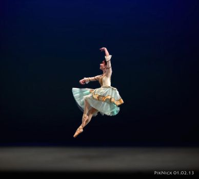 41st INTERNATIONAL BALLET COMPETITION- DANCER by PikNicx