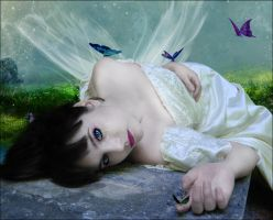 +Butterflies sisters+ by Dracona666