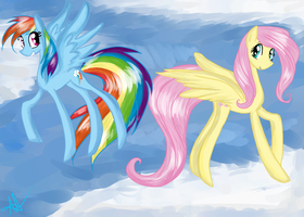 Fluttershy and Rainbow Dash by May379