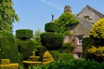 Levens Hall 44 by Forestina-Fotos