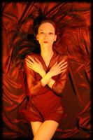 Red Silk VII. by TigerMonkeyProject