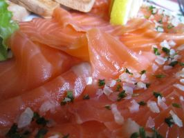Salmon close up by Santian69