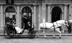 Eco-Friendly Bridal Transport by EarthHart