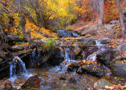 Fall Waters by marsMGphotography