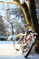 Snowy Bike by gperkins10