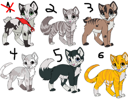 Kitten Adoptables by shidoni-the-wolf