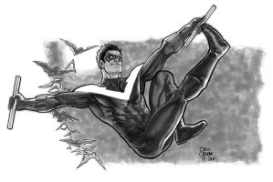 Nightwing by craigcermak