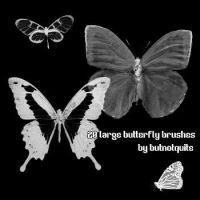 Large butterfly brushes by butnotquite