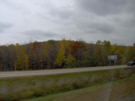 Northern Wisconsin 1 by Typh39