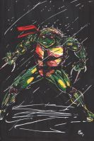 Raph in Sharpie and Correction Pen by BradMatthews