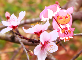 Peach Blossoms by purplethinks