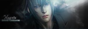 Noctis Lucis Caellum by Ascleme