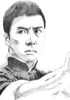 Ip Man-Donnie yen by cheehoG