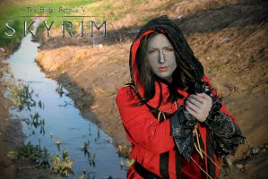 The Duty of the Dragonborn by MimiruCosplayDiary