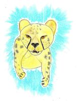 Cheetah by LIZ94